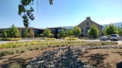 Hall Wines St.Helena