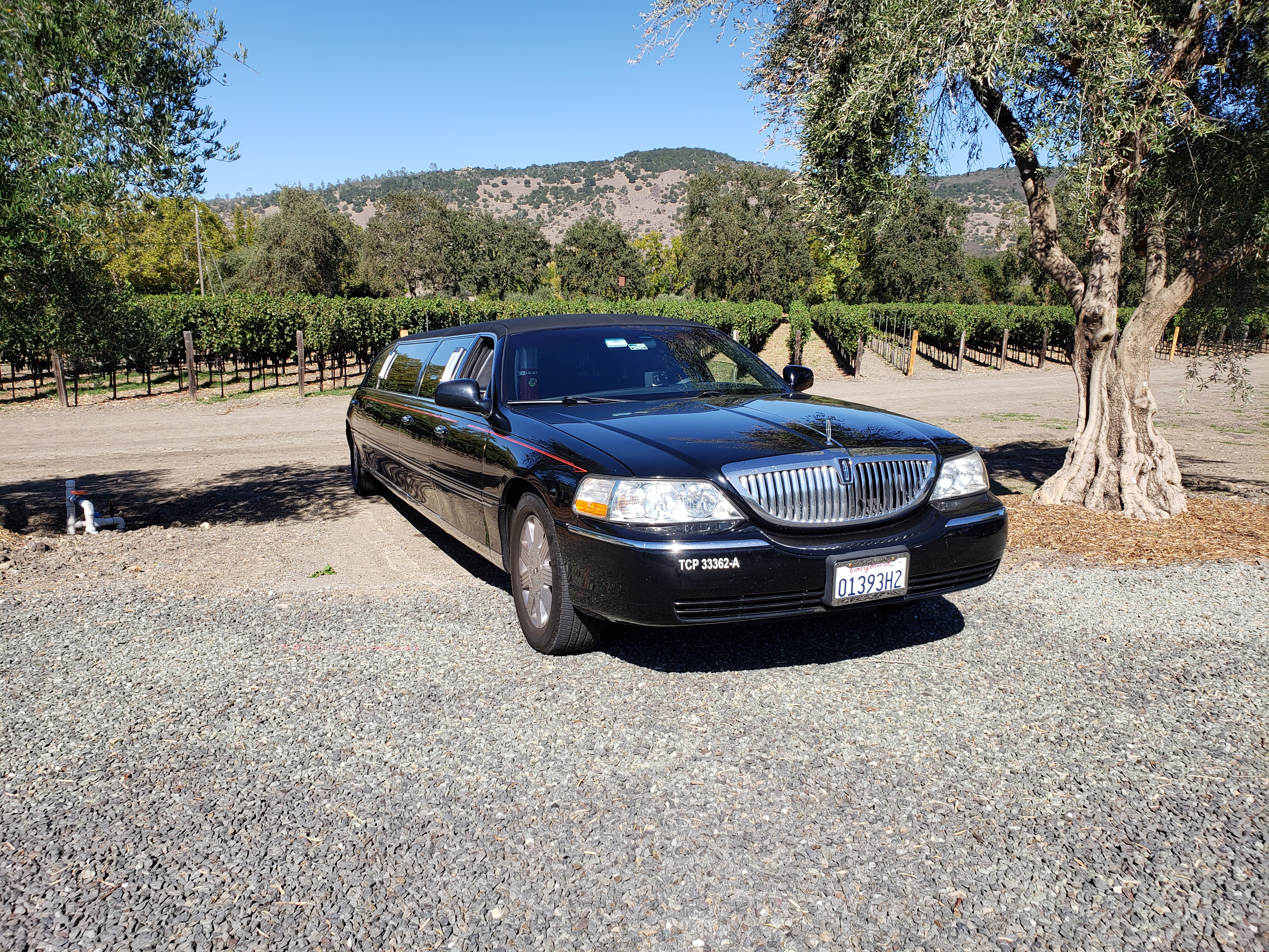 Napa Limo Wine Tour