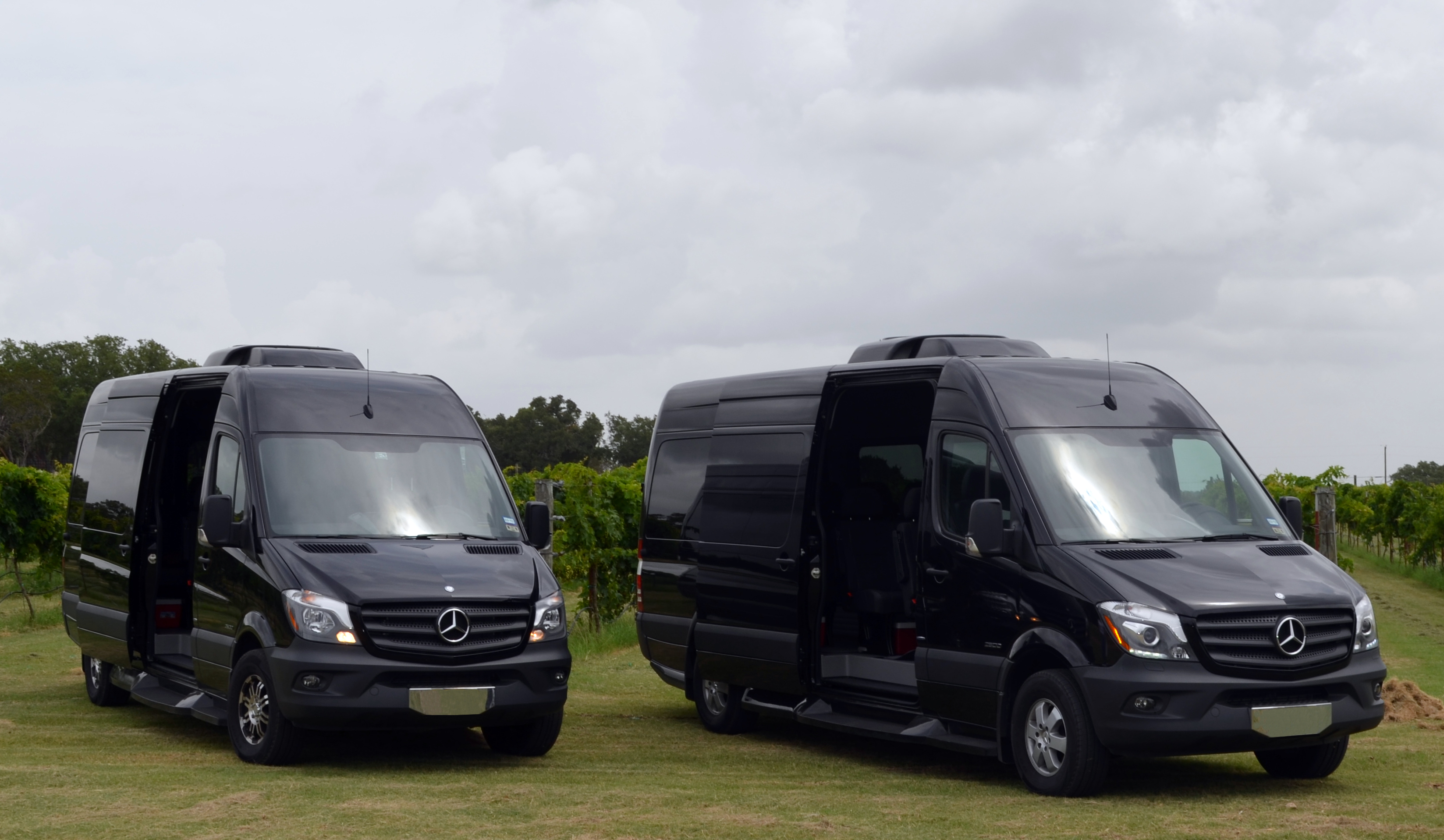Mercedes-Benz Sprinter Napa Tours
