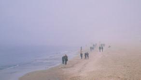 W nadmorskiej mgle