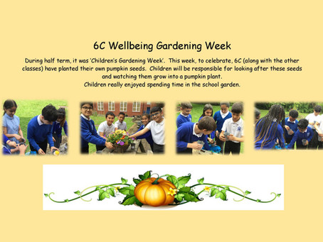 6C Wellbeing Gardening Week
