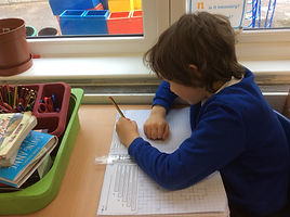 Year 4 - Exploring Lines of Symmetry (2)