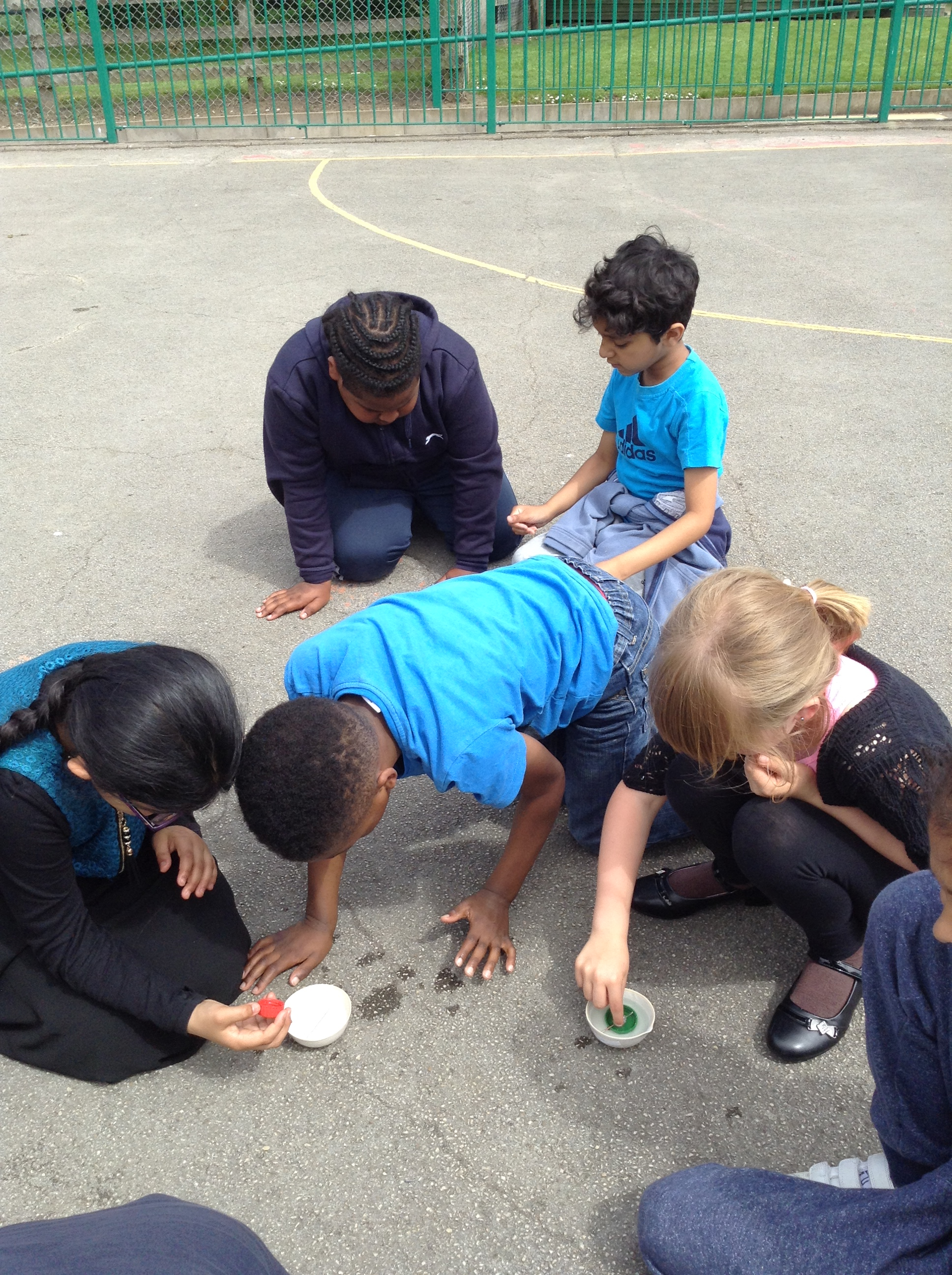 Year 3 testing out their compasses