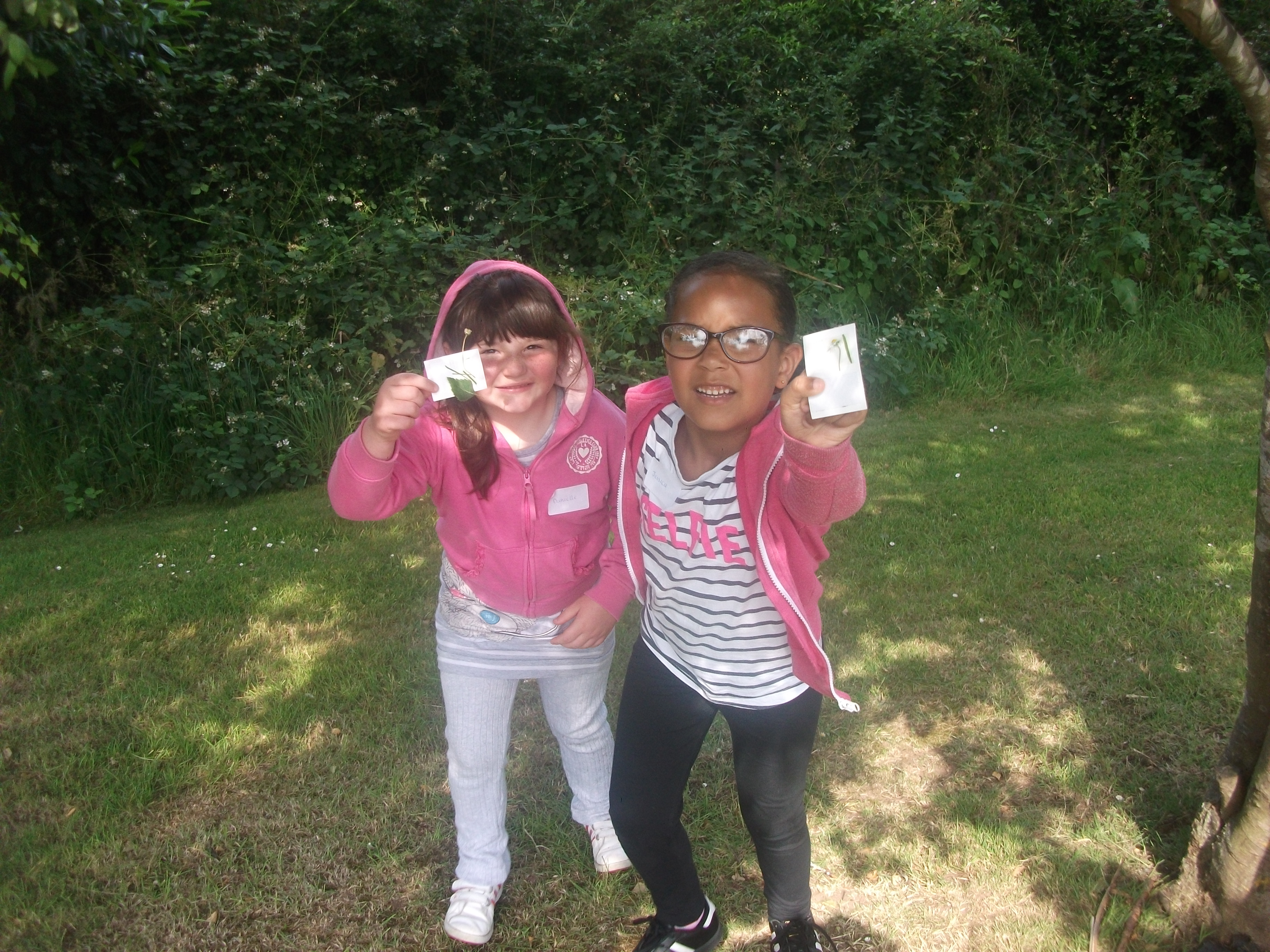 Year 1 St. Mary's Forest School (8)