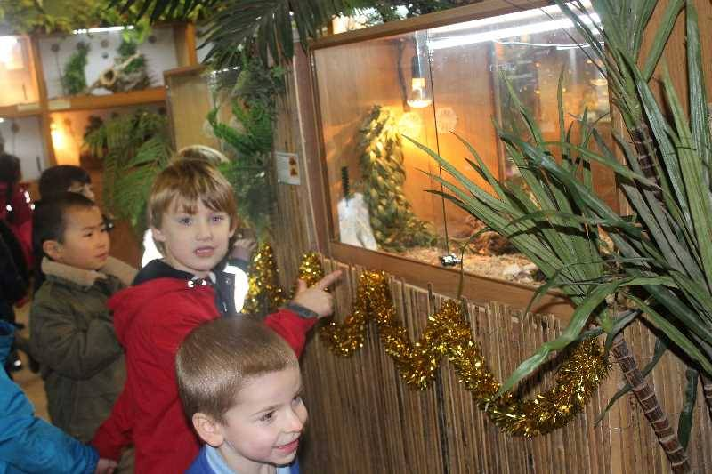 1 Vale's Trip to Hatton's Christmas Kingdom  (28)
