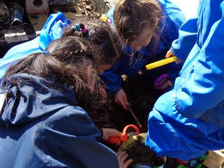 Forest School - Nursery - Bug Hunting