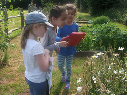 Year 1 St. Mary's Forest School (7)