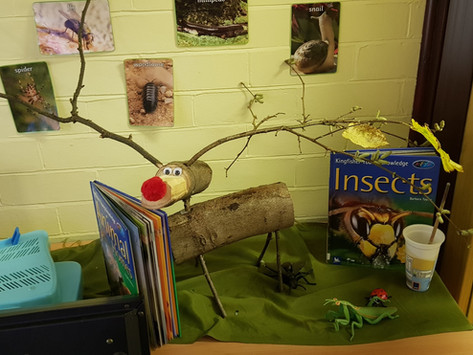 Forest School - Reception - Making a Reindeer