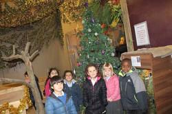 1 Vale's Trip to Hatton's Christmas Kingdom  (17)
