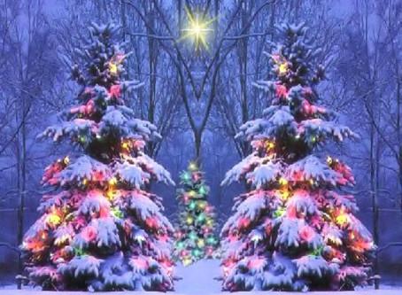 School Closure + Christmas Workshops