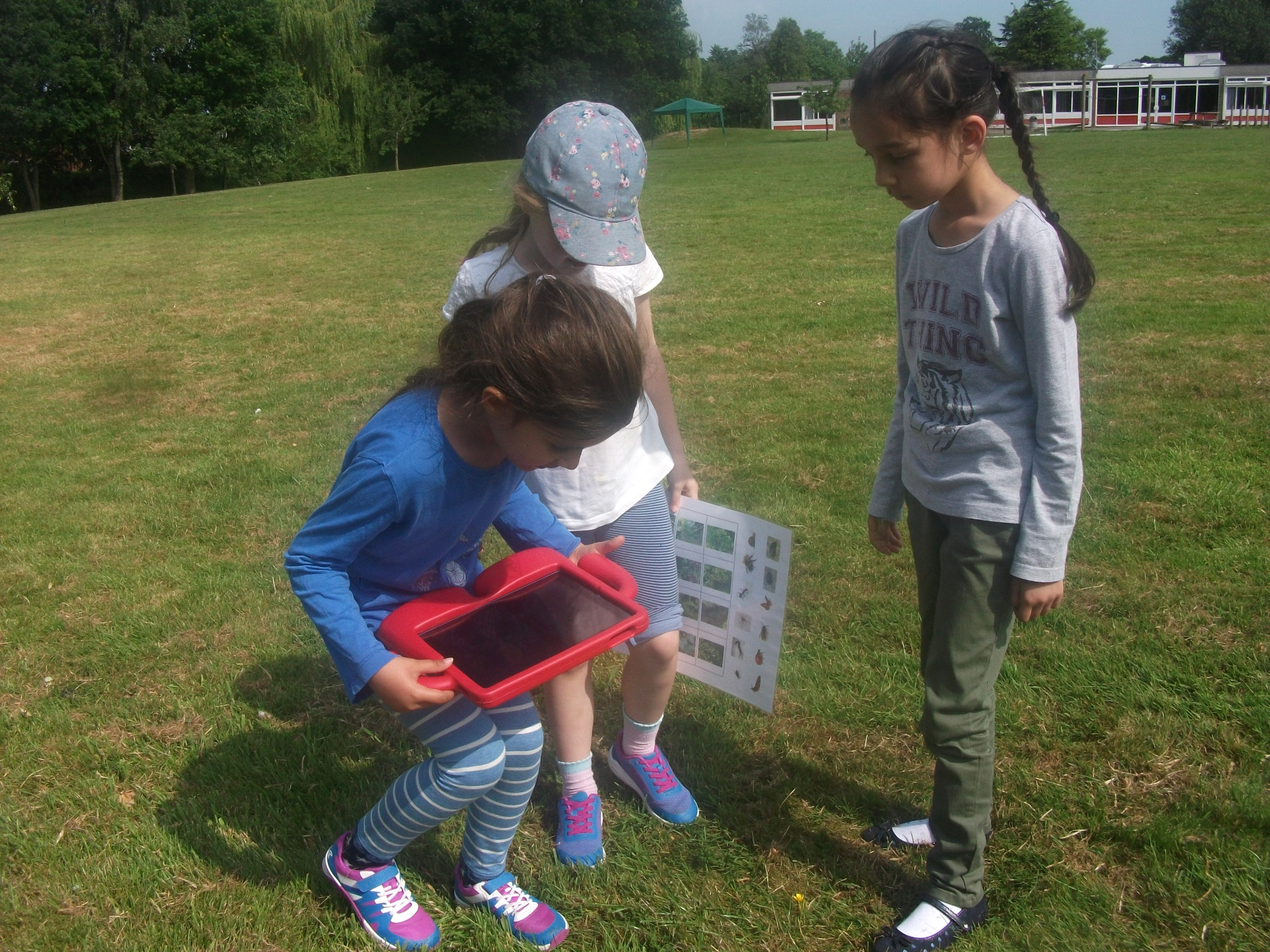 Year 1 St. Mary's Forest School (6)