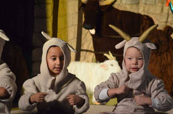 Nativity 2016 (Chad)  (161)