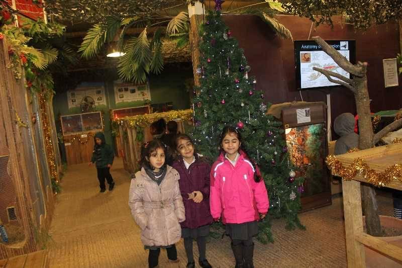 1 Vale's Trip to Hatton's Christmas Kingdom  (22)