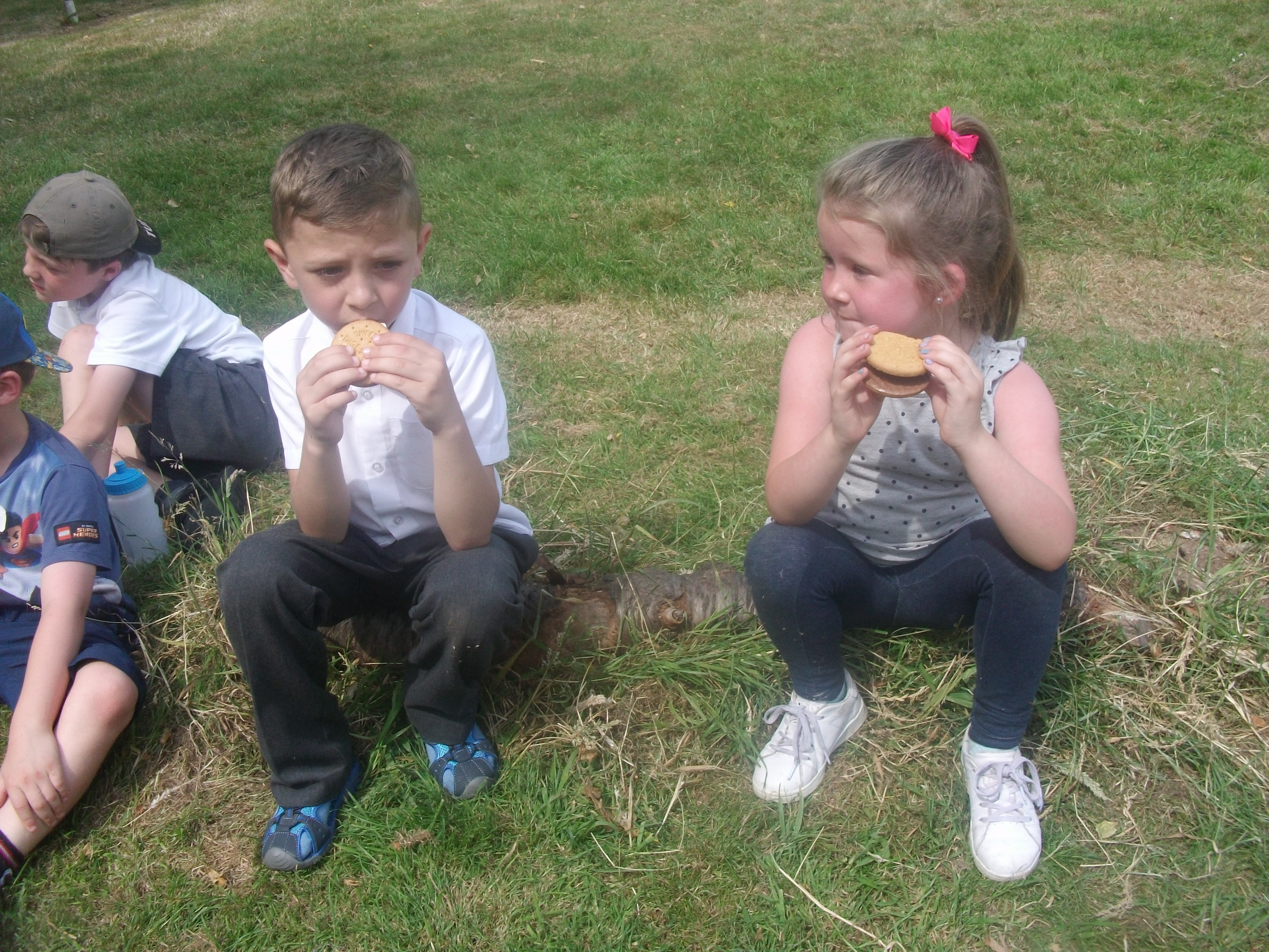 Year 1 St. Mary's Forest School (102)