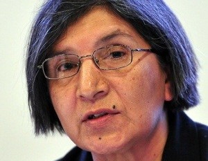 Second UN rapporteur visit to SA called off