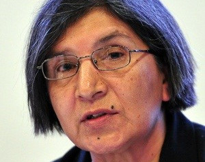 Second UN rapporteur visit to SA called off