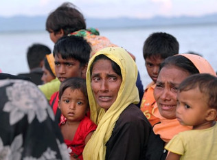OIC rights body finds organized campaign of ethnic cleansing against Rohingyas