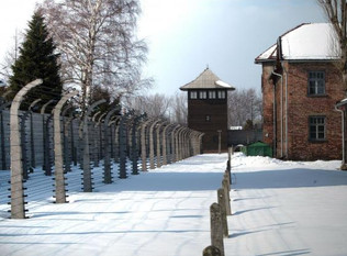 Destination Unknown: Holocaust survivor Ed Mosberg on life in concentration camps and building a new