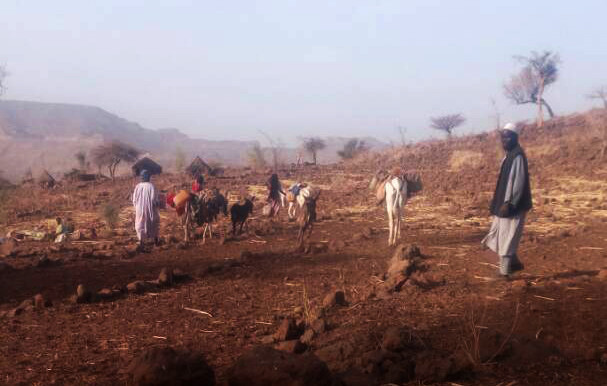 More of those displaced by violence in Jebel Marra