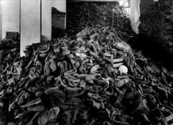 IX. Extermination