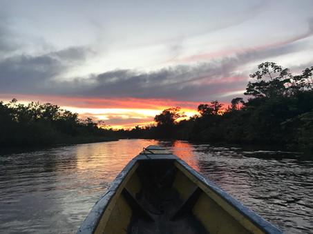 Bolivia - Amazones