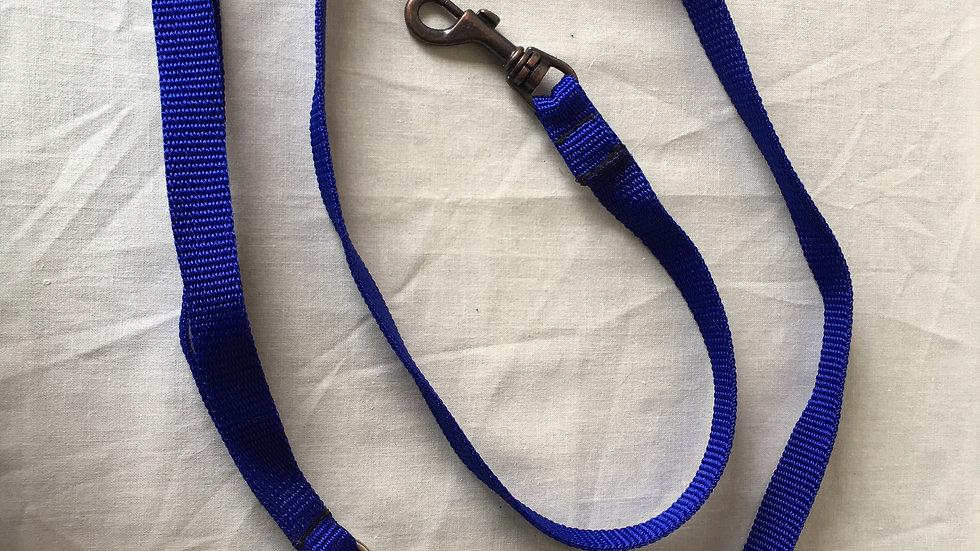 Blue webbing lead