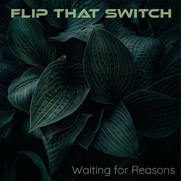 Flip That Switch - Waiting for Reasons.png