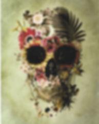 Skull Image.jpeg