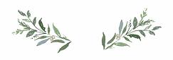 21-216859_greenery-transparent-backgroun