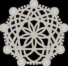 cc-enneagram_2x.png