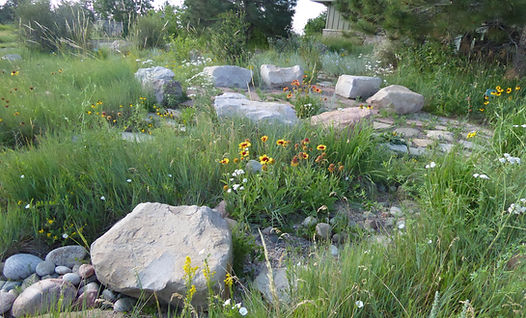 council circle-Native Garden.JPG