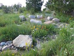 council circle-Native Garden.JPG