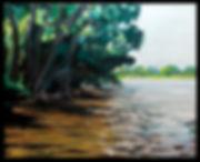 Blackwater River Summer 16 x 20 oil on c