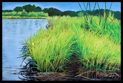 Ayres Creek Summer 24 x 36 oil on canvas