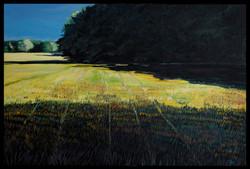 Summer Field at Dusk 24x36 oil on canvas