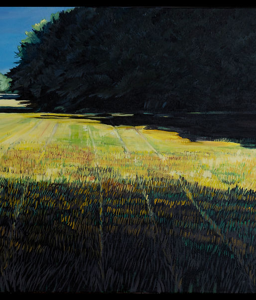 Summer Field at Dusk 24x36 oil on canvas