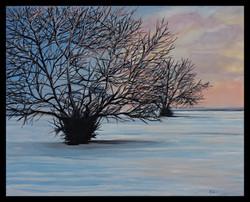 Winter Morning Snow 12x16 oil on canvas.