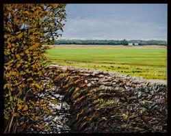 Field Edge 16 x 20 oil on canvas