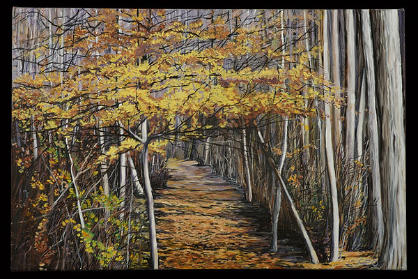 Walk in the Woods 24 X 36 Oil on canvas.
