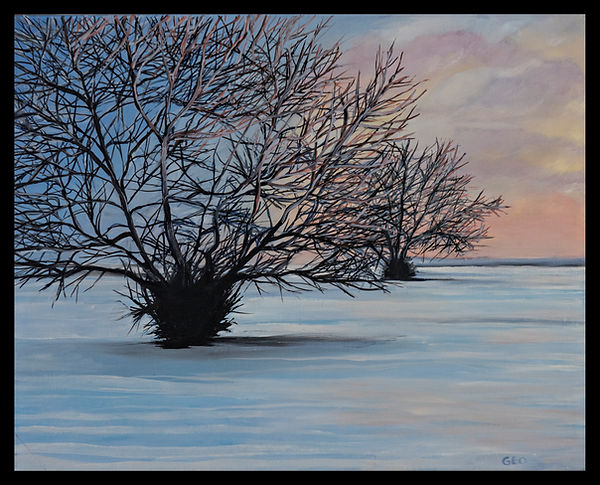 Winter Morning Snow 16 x 20 oil on canva