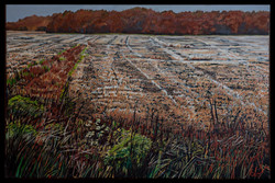 Stubbled Field 24x36 oil on canvas