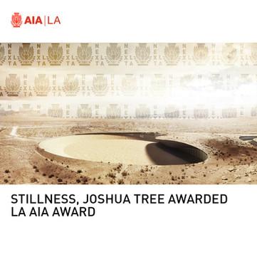 Stillness, Joshua Tree Next LA Award