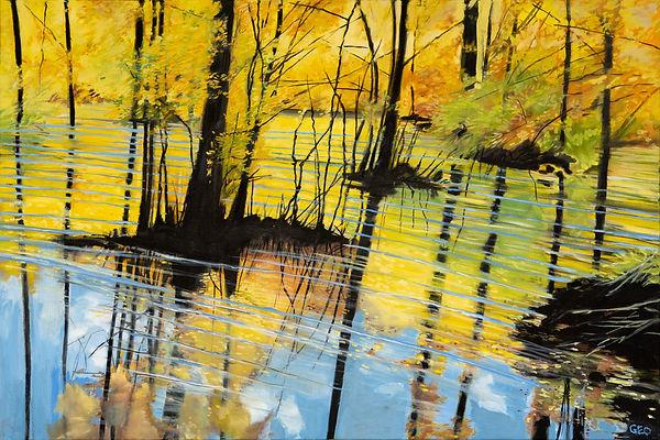 Pocomoke Autumn
