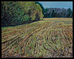 Girddletree Spring Field16 x 20 oil on c