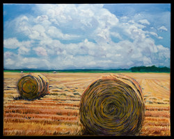 Round Bales 16 x 20 oil on canvas SOLD