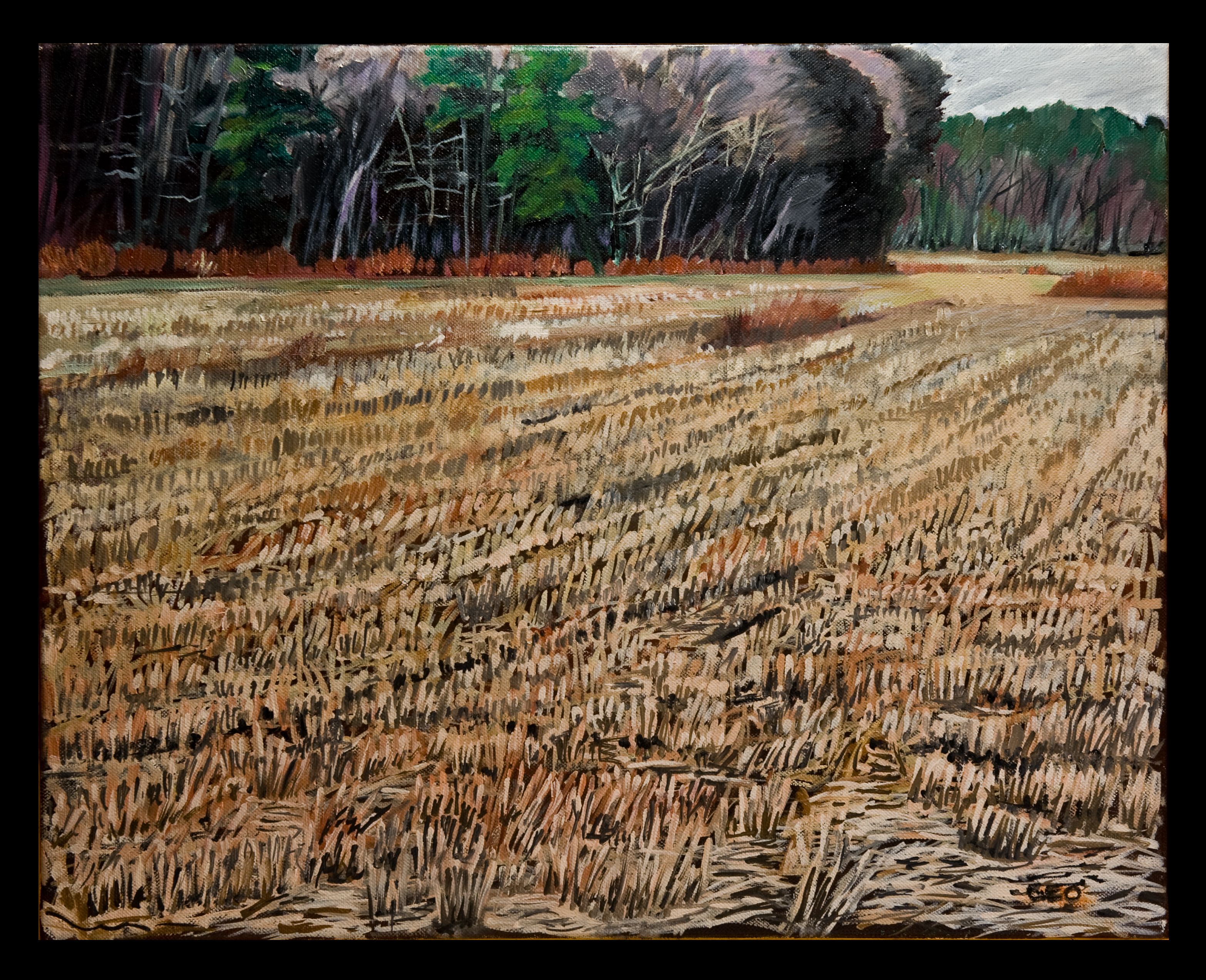 Winter Field 16x20 oil on canvas