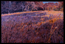 Fall Field at Sunset 24x36 oil on canvas