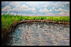 Assateague, Fresh Water Flats 24x36 oil