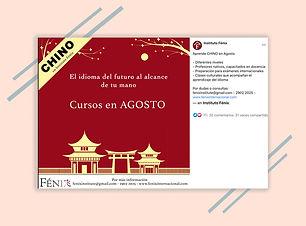 Case Study Fenix Institute Sud Creative