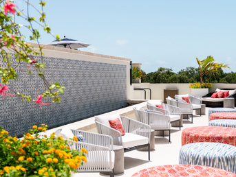 Florida's Hottest Rooftops for Sips, Bites and more!